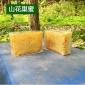 �G�l山花蜂巢蜜500g 成熟封�w�C 一件代�l天然蜂巢 �蜂蜜土蜂蜜